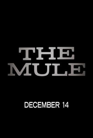 A03 - THE MULE