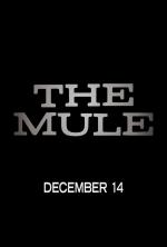 A01 - THE MULE